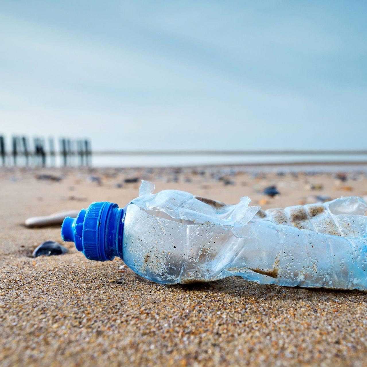 Le Plastique : Roi des Océans